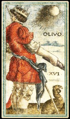Сола-Буска, 16 Старший аркан, OLIVO